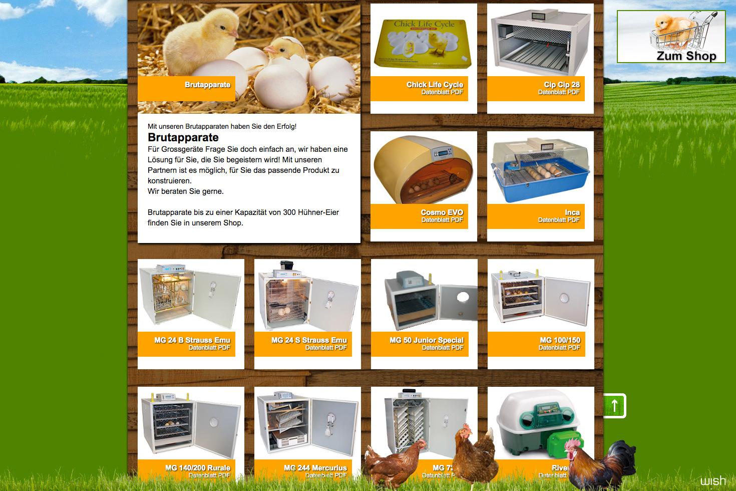 Bild 3 vom Ds Eiermandli Webseite / Shop