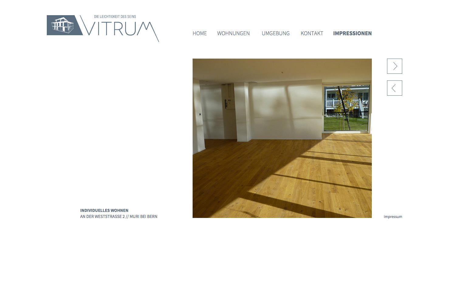 Bild 3 vom Vitrum Webseite